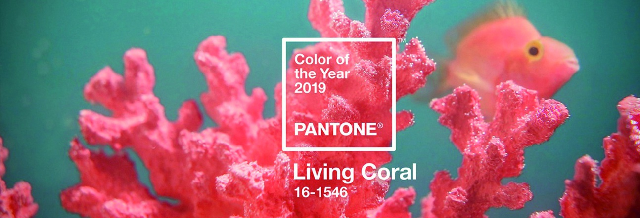 PANTONE 2019 YILININ RENGİNİ BELİRLEDİ: LIVING CORAL